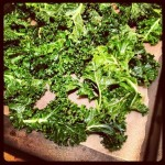 All Kale Everything Recipes/Lesson Plan