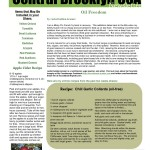 Brooklyn Farm Share Recipes 2 – Oil Freedom